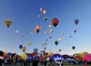 Champ de montgolfières
